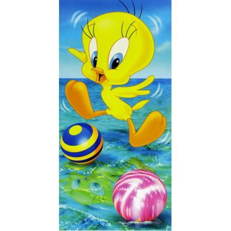 Drap De Plage Bassetti Kids Warner Bros Skippy V1