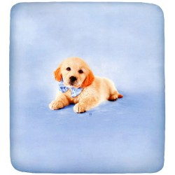 Fitted Sheet Rachael Hale Bassetti La Natura Doggy Golden Retriever