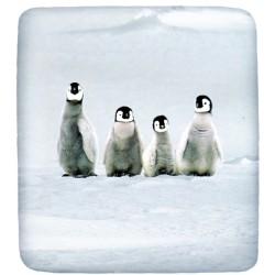 Lenzuolo Da Sotto Bassetti La Natura Abbraccio Con Angoli Pinguini