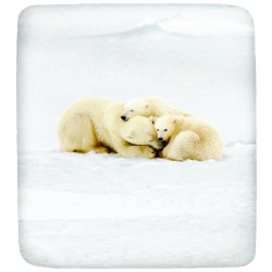 Fitted Sheet Bassetti La Natura Family Teddy Polar Bears
