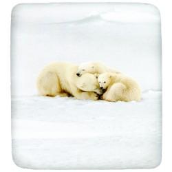 Lenzuolo Da Sotto Bassetti La Natura Family Teddy Con Angoli Orsi Polari