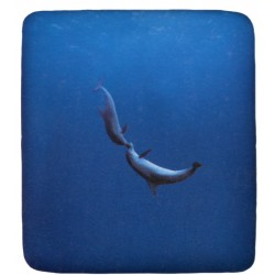 Fitted Sheet Bassetti La Natura Dolphins