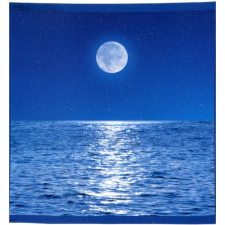 Decorative Throw Bassetti La Natura Moon Claire