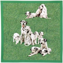Decorative Throw Bassetti La Natura Di Granfoulard Dalmatian Puppies