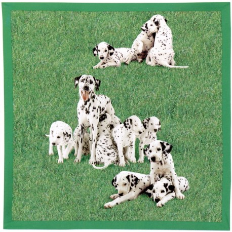 Decorative Throw Bassetti La Natura Di Granfoulard Puppies V1