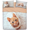 Complete Sheet Set Bassetti Imagine Flock Cat