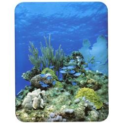 Fitted Sheet La Natura Bassetti Seabed